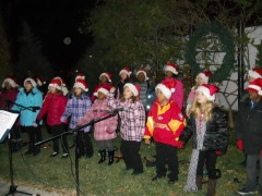 tree_lighting_05