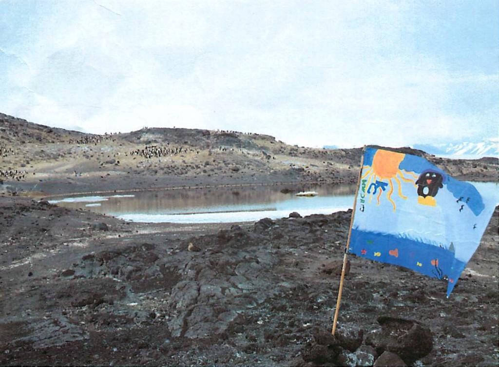 Penguin Flag (1)
